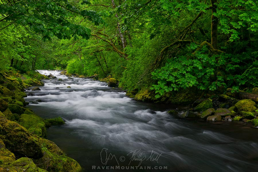 Photograph Tanner Creek by Raven Mountain Images on 500px