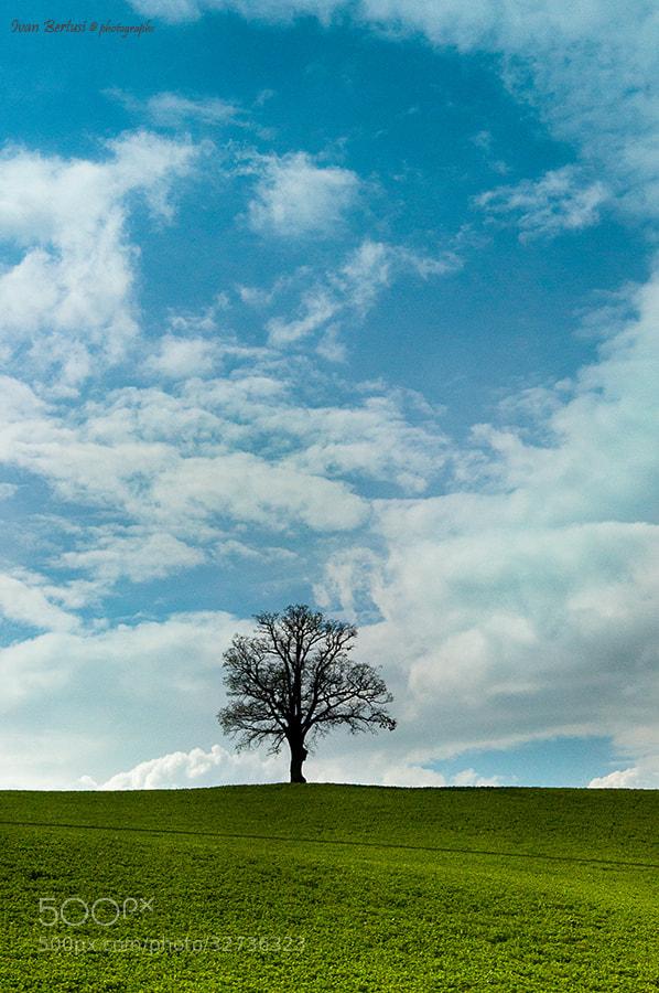 Photograph Tra terra e cielo by Ivan Bertusi on 500px