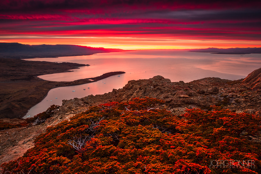 Photograph Red Dawn by Joerg Bonner on 500px