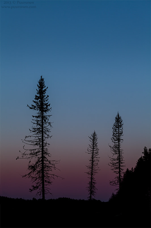 Photograph Silhouettes by Samu Puuronen on 500px