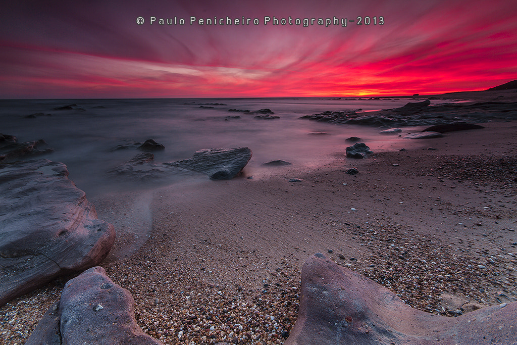Photograph Passion Nights by Paulo Penicheiro on 500px