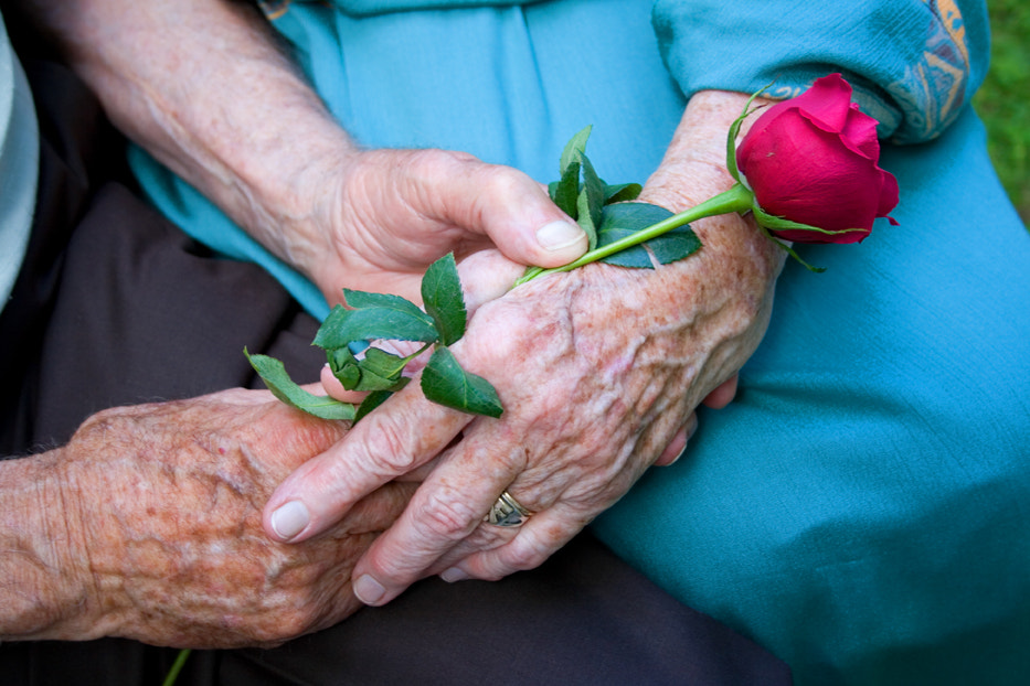 Photograph Hands of Love by Larry Landolfi on 500px