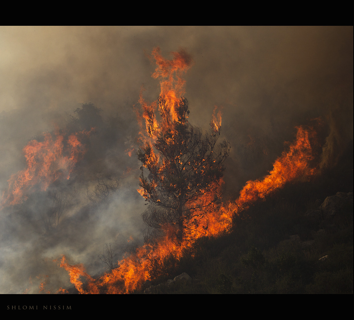 Photograph fire by shlomi nissim on 500px