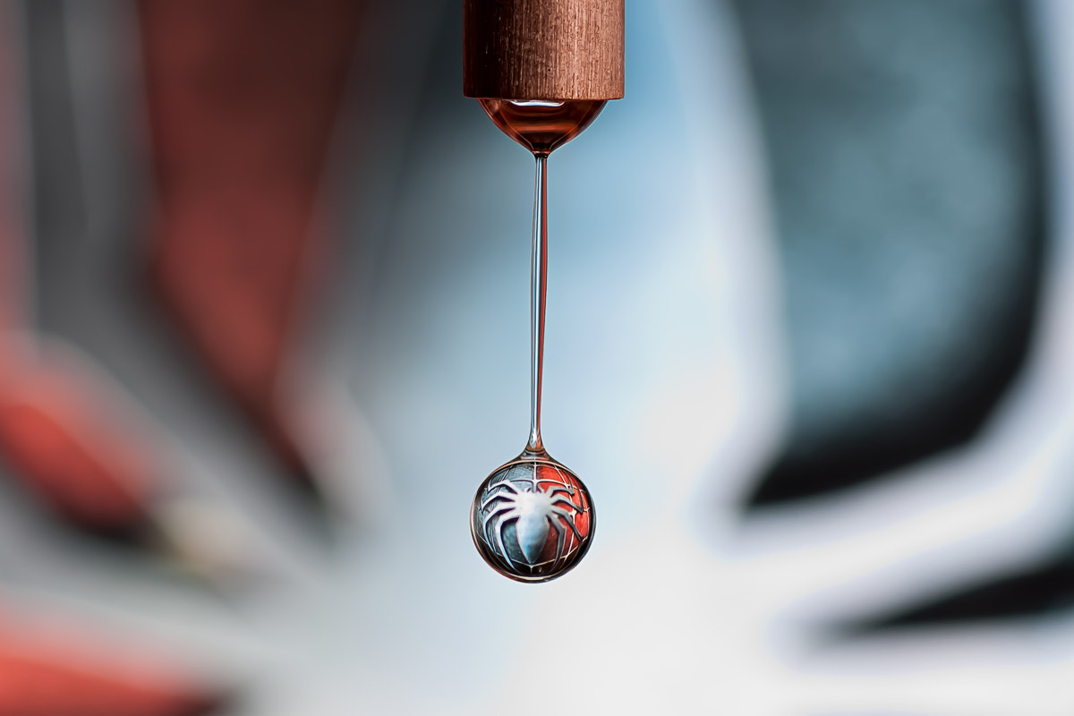 Photograph Spidey in a drop by Markus Reugels on 500px
