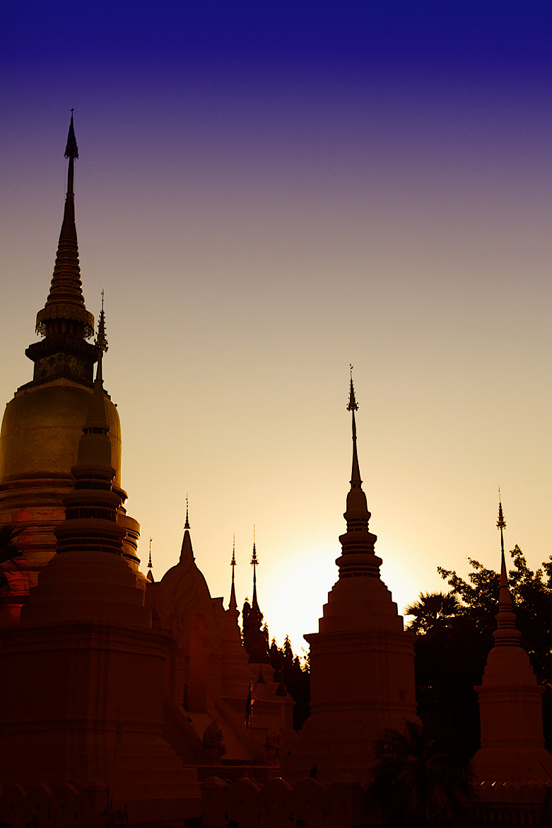 Photograph Wat Suan Dok Temple by Jinny Tan on 500px