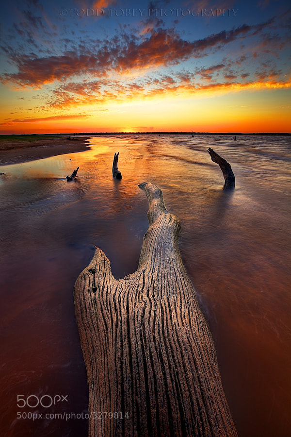 Photograph Beached by Todd Tobey on 500px