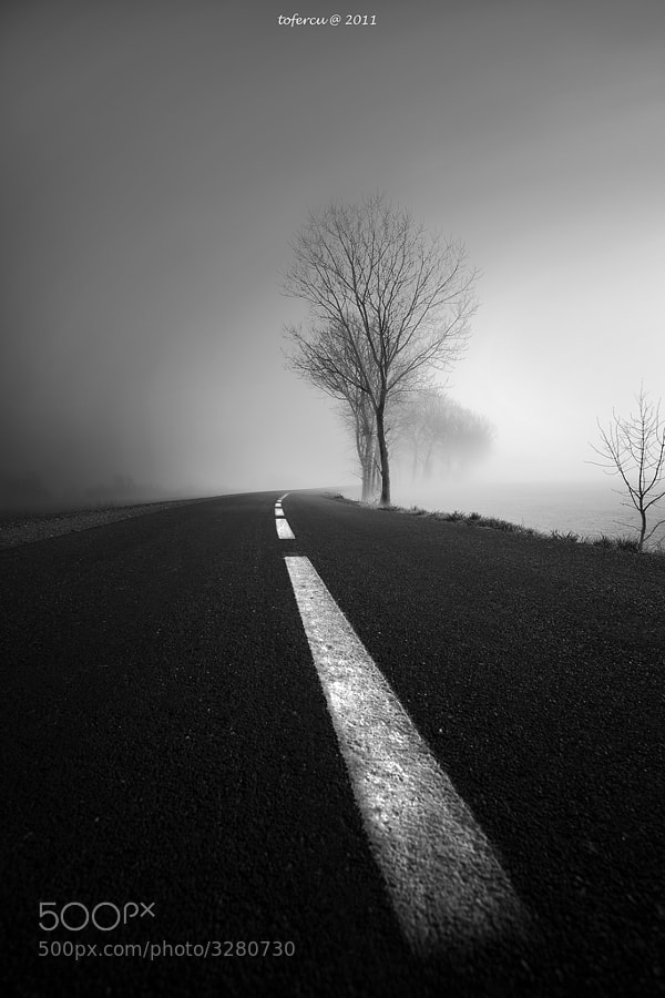 Photograph the road by toni fernandez on 500px