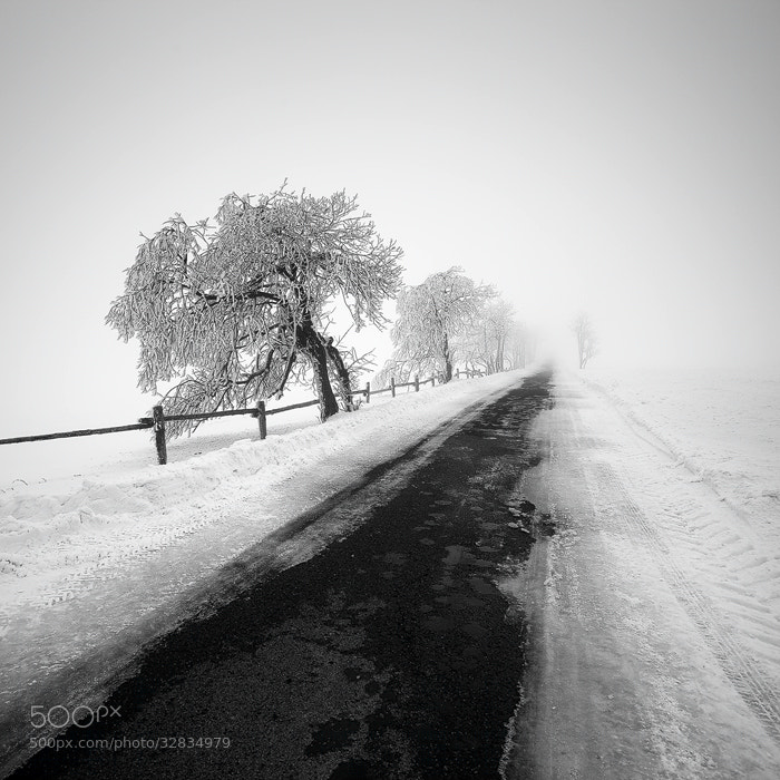 Photograph Road II by Martin Rak on 500px