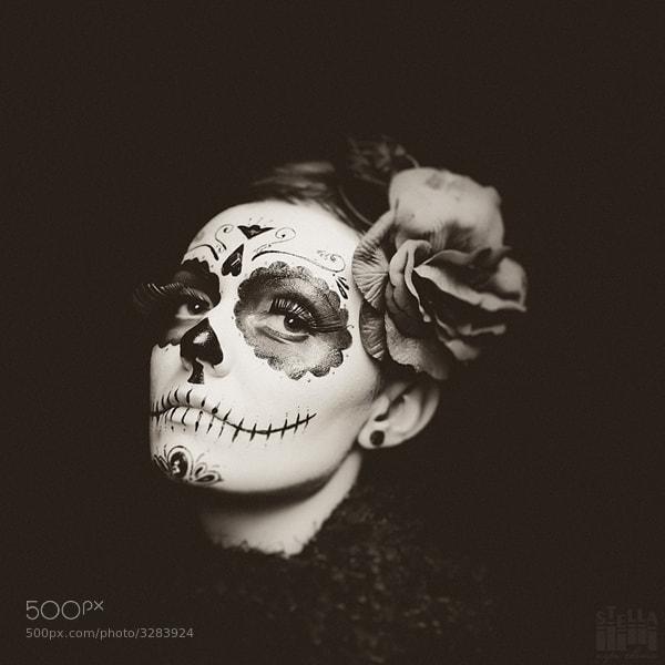 Photograph Untitled by Stella Melnychenko on 500px