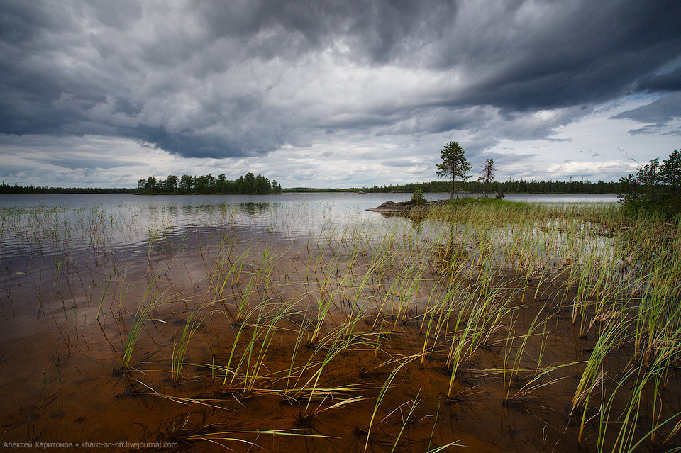 Photograph storm is coming by Alexey Kharitonov on 500px