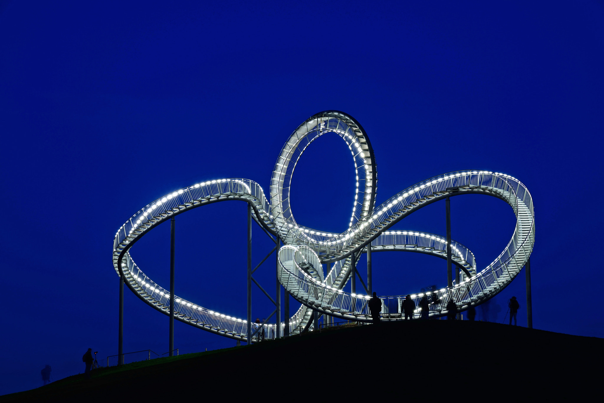 Photograph Tiger & Turtle by Michael Hubrich on 500px