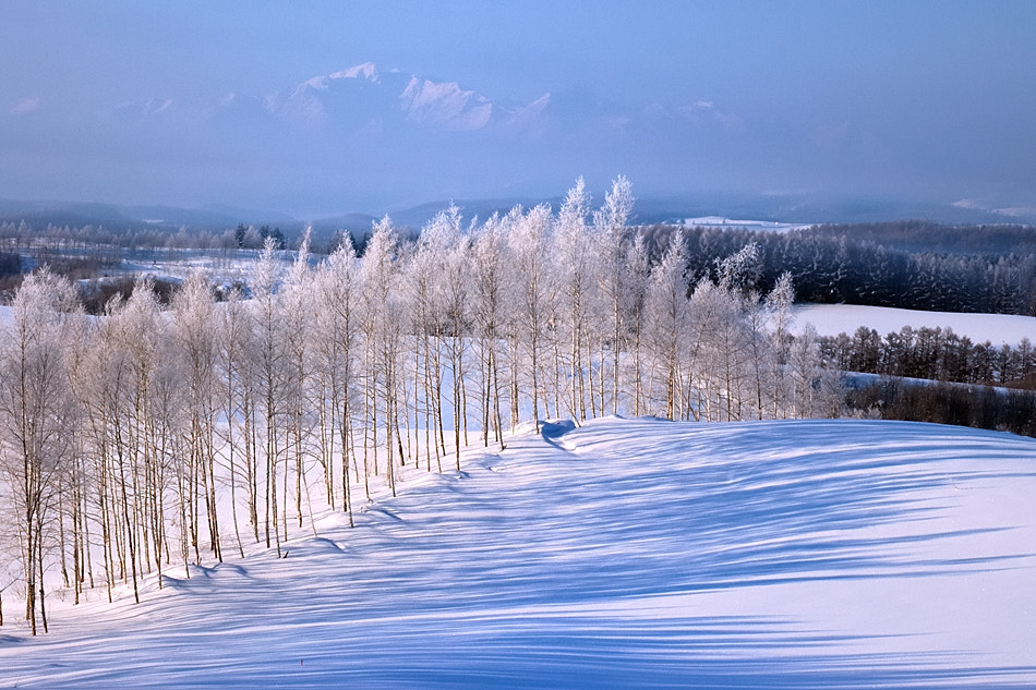 Photograph Blue Shadows Of A Hill  by Kent Shiraishi on 500px