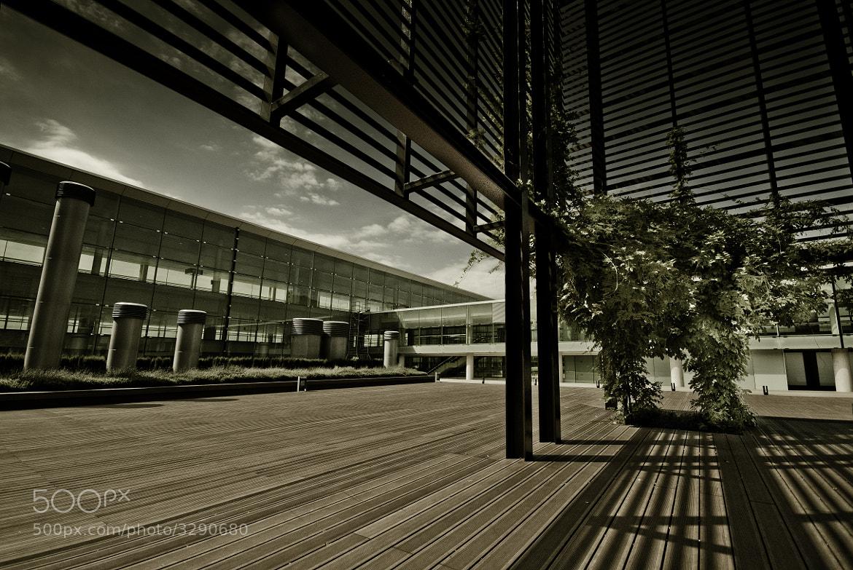 Photograph I alone by Raúl Iglesias on 500px