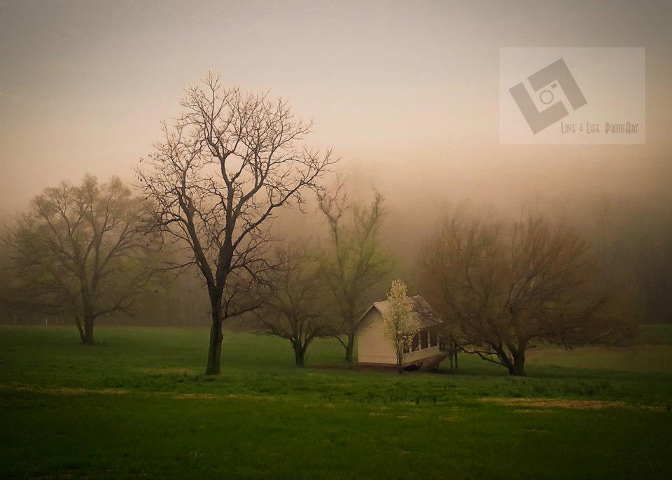 Photograph Foggy Evening by Michelle  Schultz on 500px