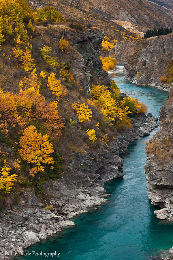 Fall Color in the Kawarau River Gorge by Robin Black on 500px.com