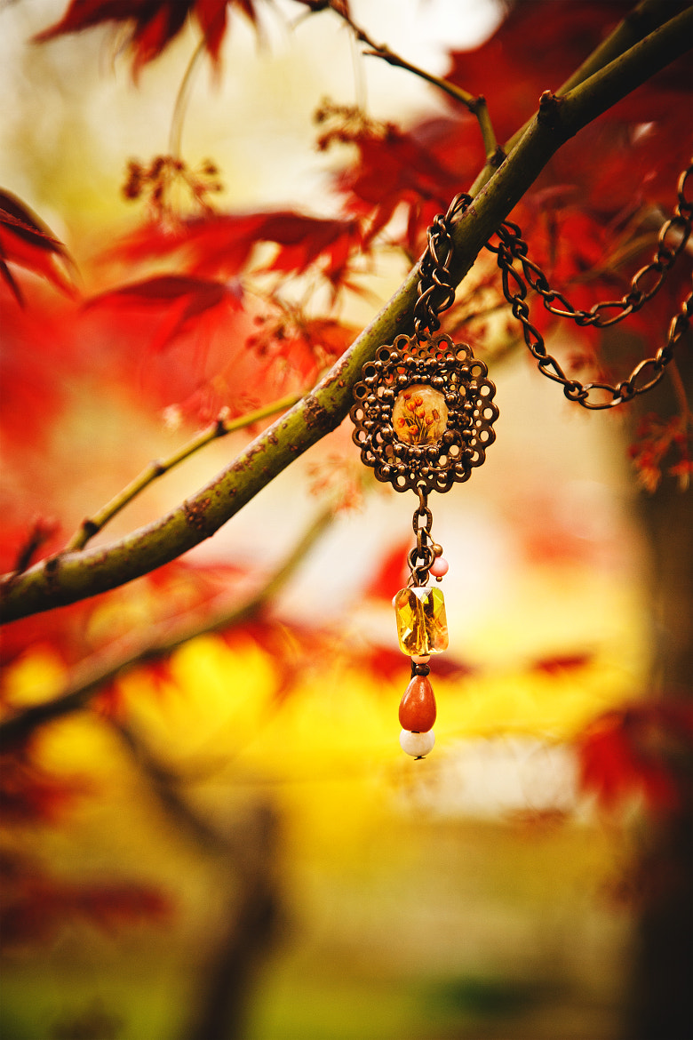 Photograph Red maple necklace by Chris Van Beekum on 500px