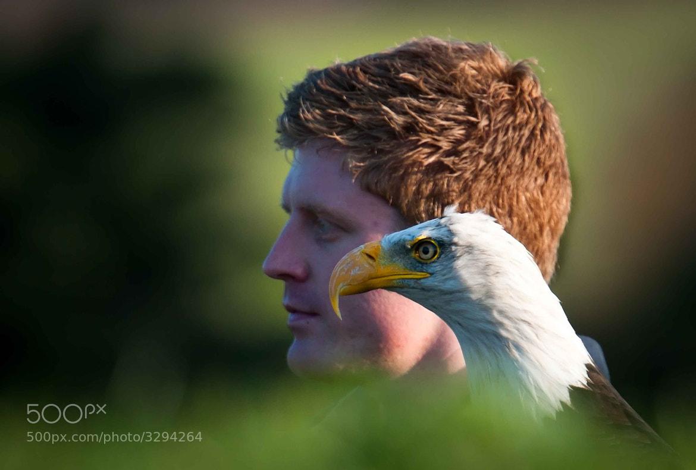 Photograph Eagle Pal by Mauri  on 500px