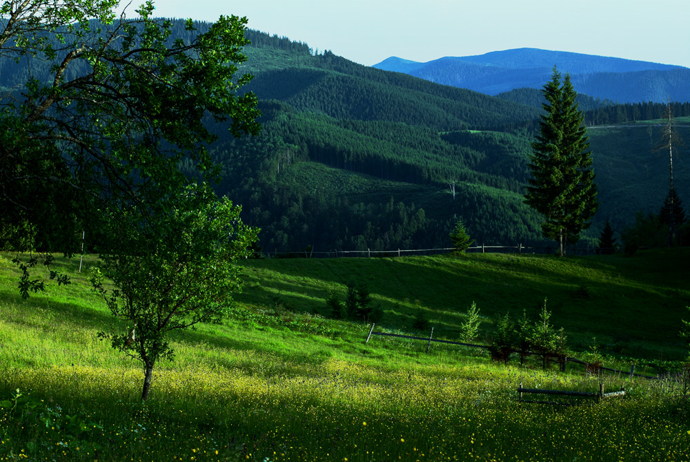 Photograph Evening in the Mountains... by jaroslav shelepa on 500px