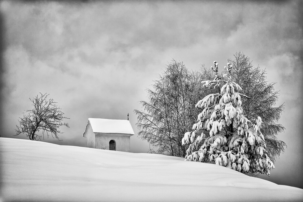 Photograph Snow by Rok Godec on 500px