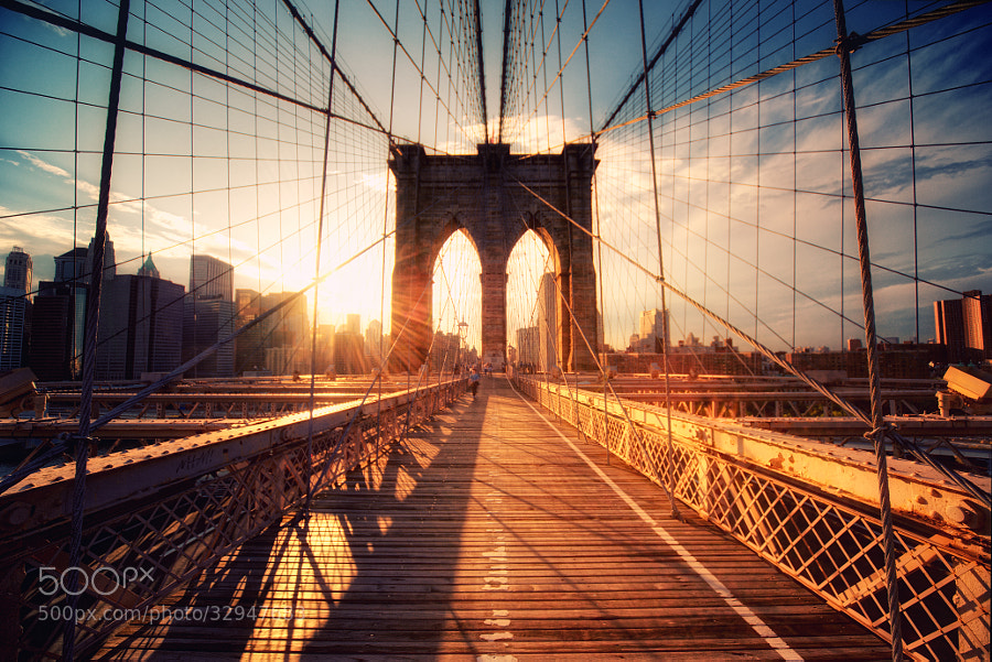 30 Lens Flare Images to Inspire You