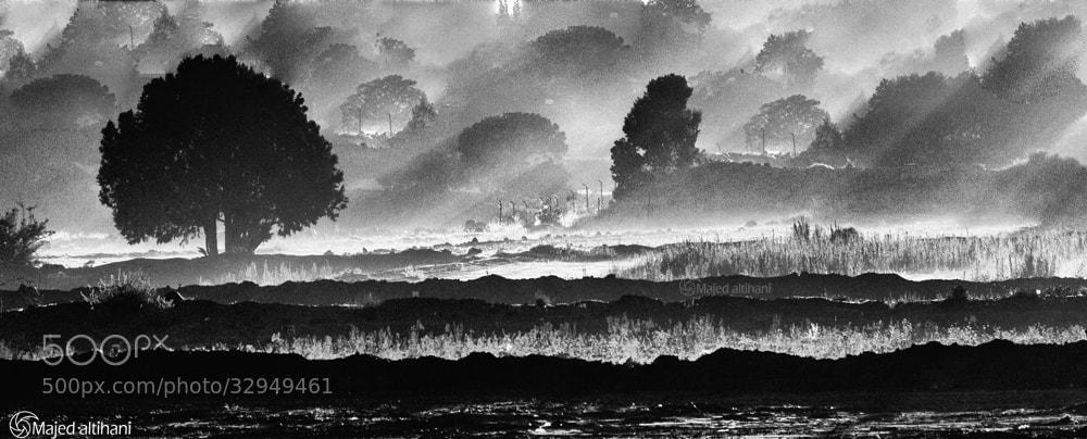 Photograph Asir by Majed   altihani on 500px