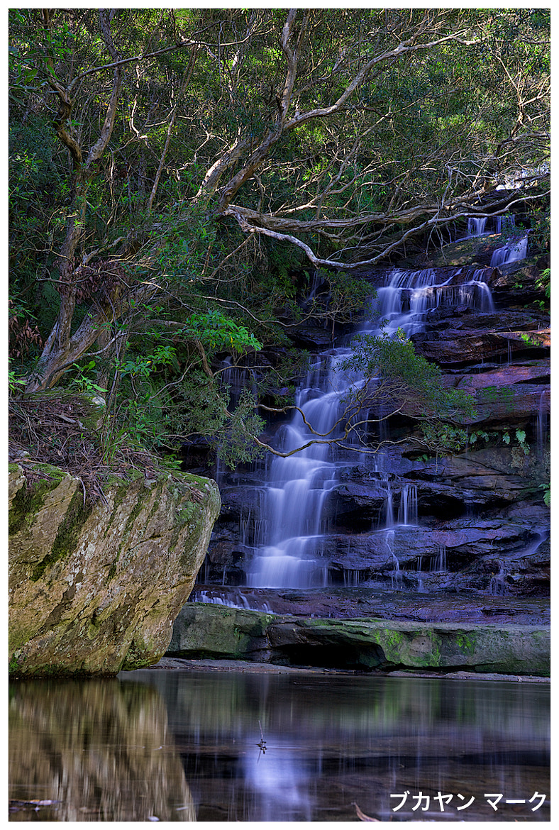 Photograph Somersby Falls by Mark Bucayan on 500px