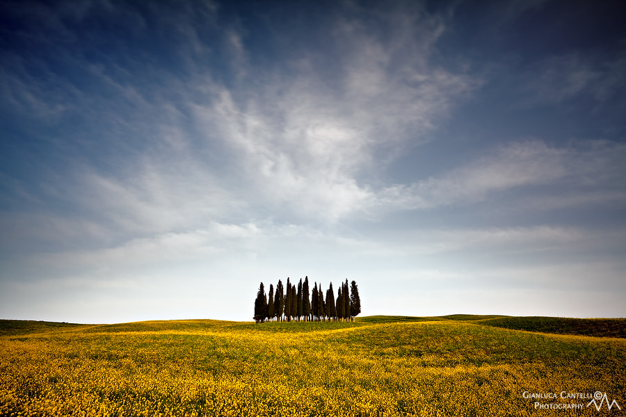 Photograph Spring Soldiers by Gianluca Cantelli on 500px