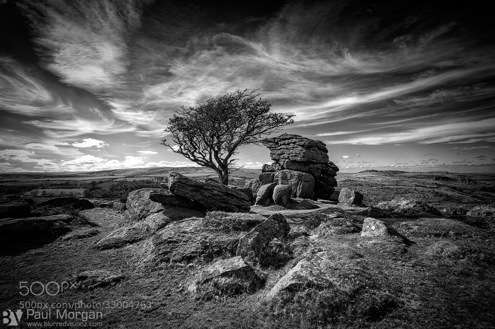 Photograph Mono Moor by Paul Morgan on 500px