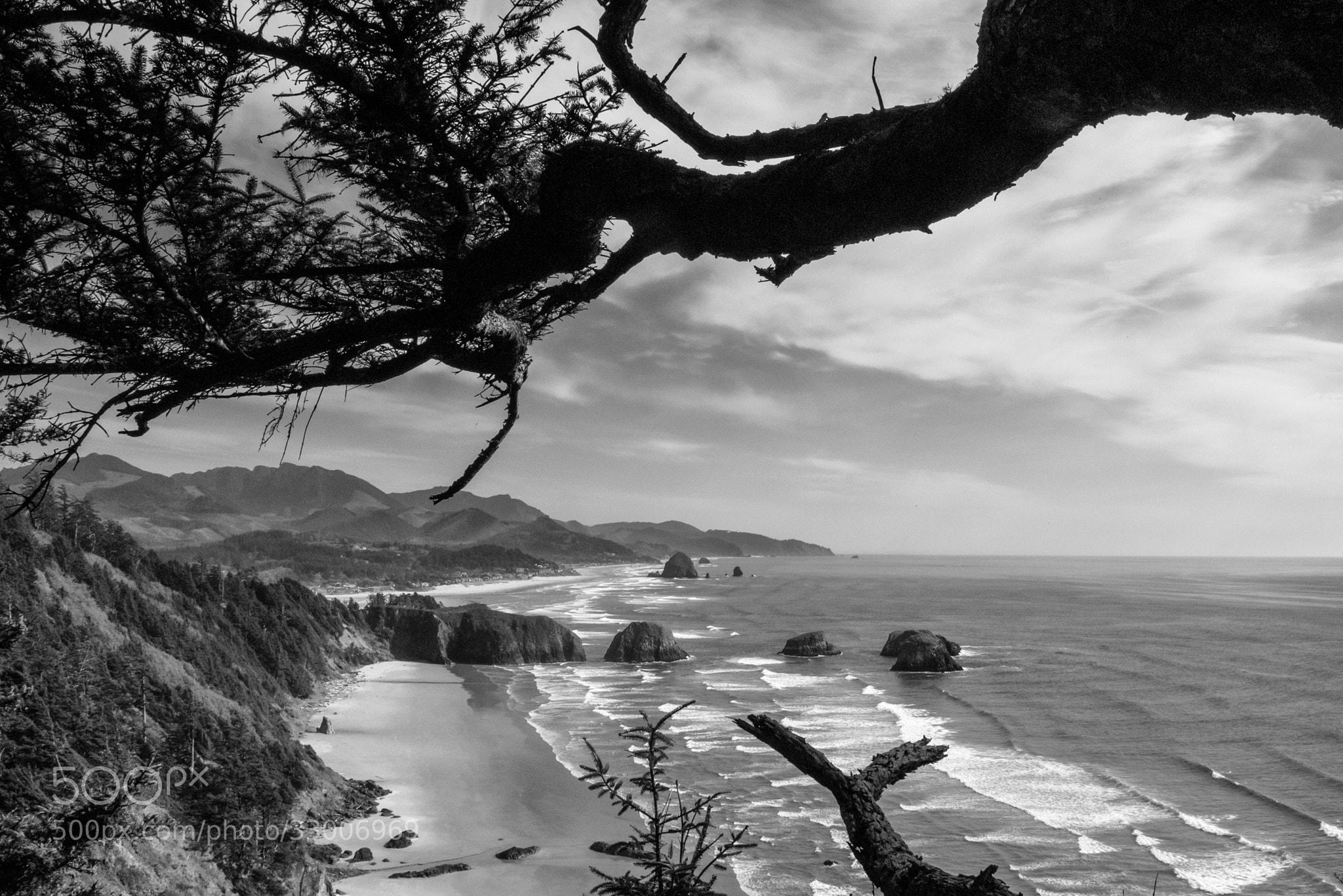 Photograph Oregon Coast by Keith Skelton on 500px