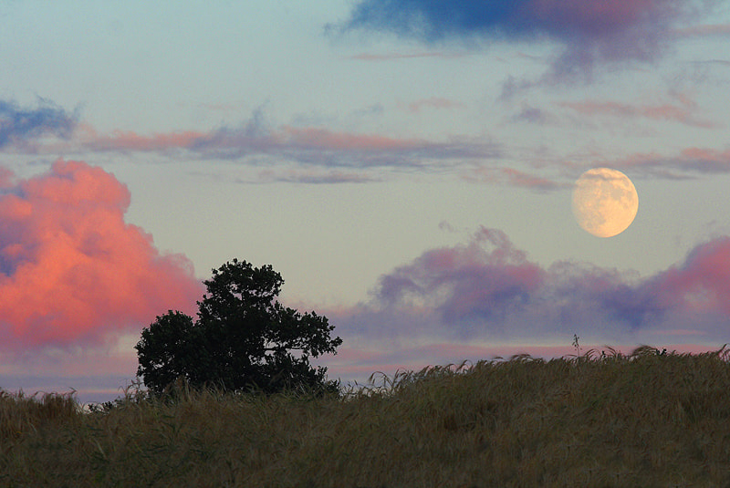 Photograph Moonrise by John Murray on 500px