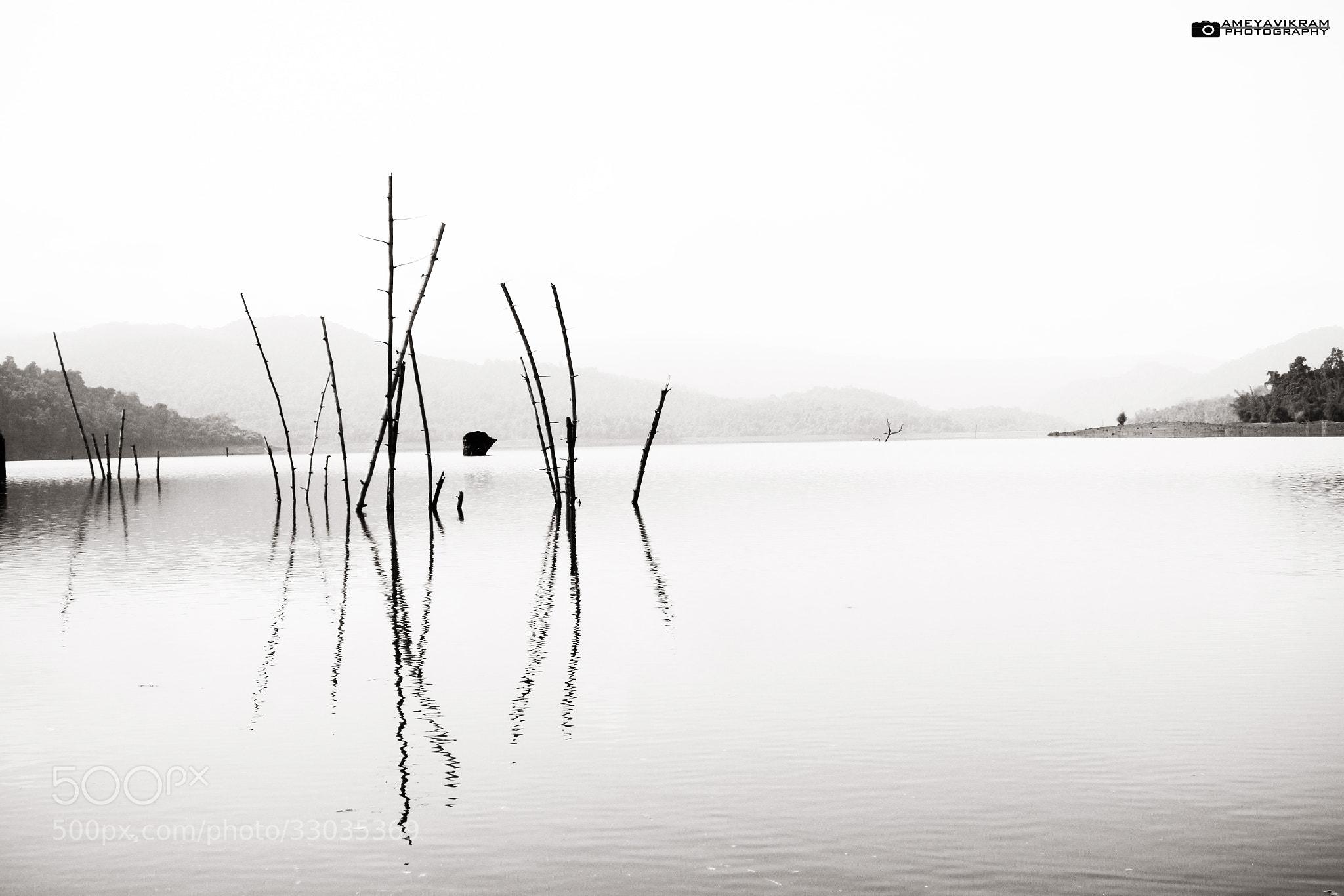 Photograph Less is more by Ameyavikram Mahalingashetty on 500px