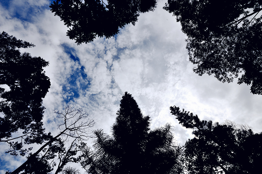 Photograph Sky by Grace Thang on 500px