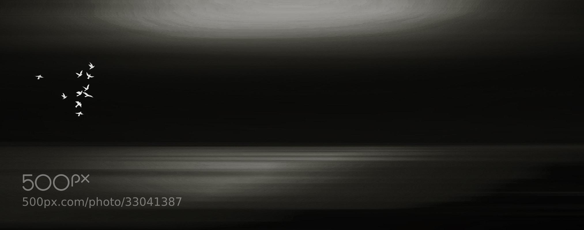 Photograph borderless by Sandra Sachsenhauser on 500px