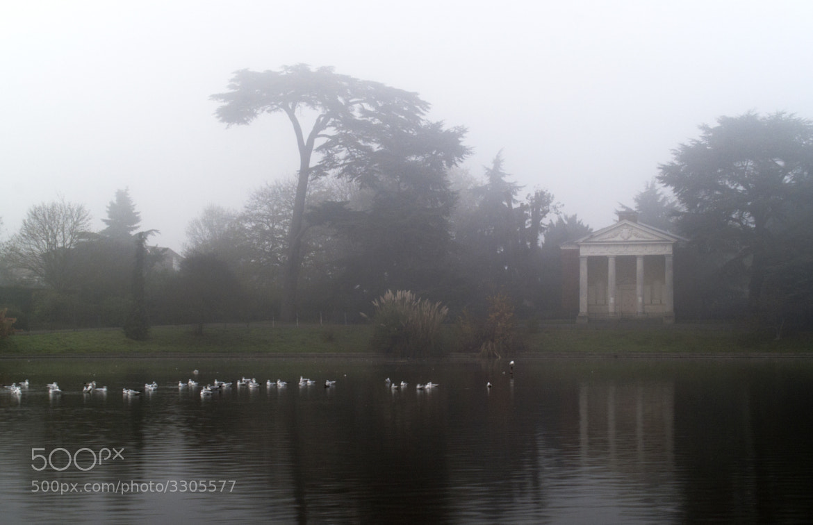 Photograph Mist over lake by Chris Maskell on 500px