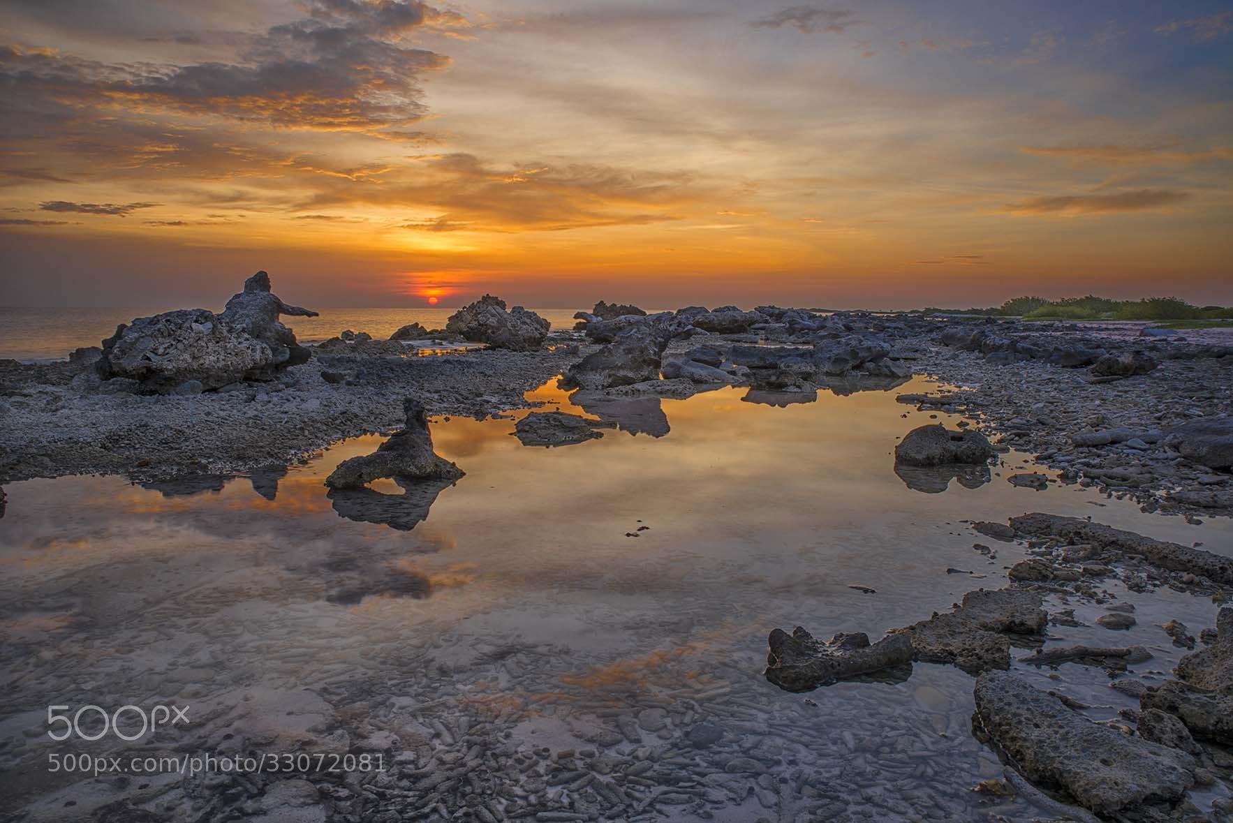 Photograph Barryl's reef by Lorenzo Mittiga on 500px