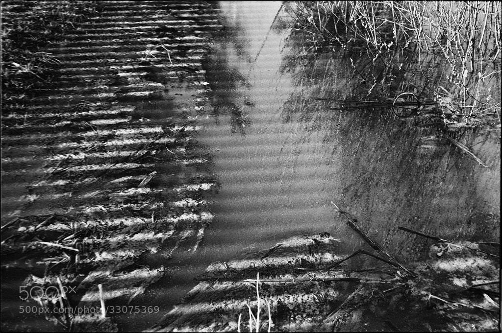 Photograph Striped puddle. by Yuriy Nezdoiminoga on 500px