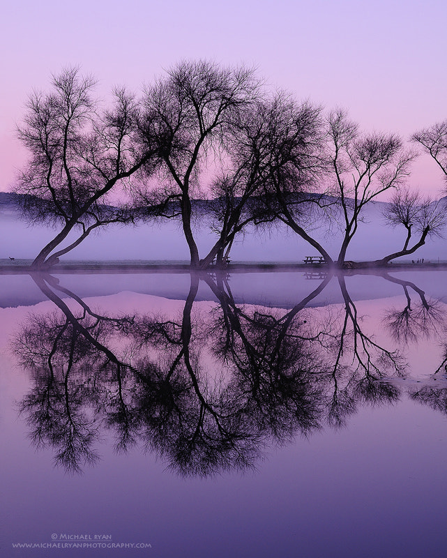 Photograph Twilight Reflections by Michael Ryan on 500px