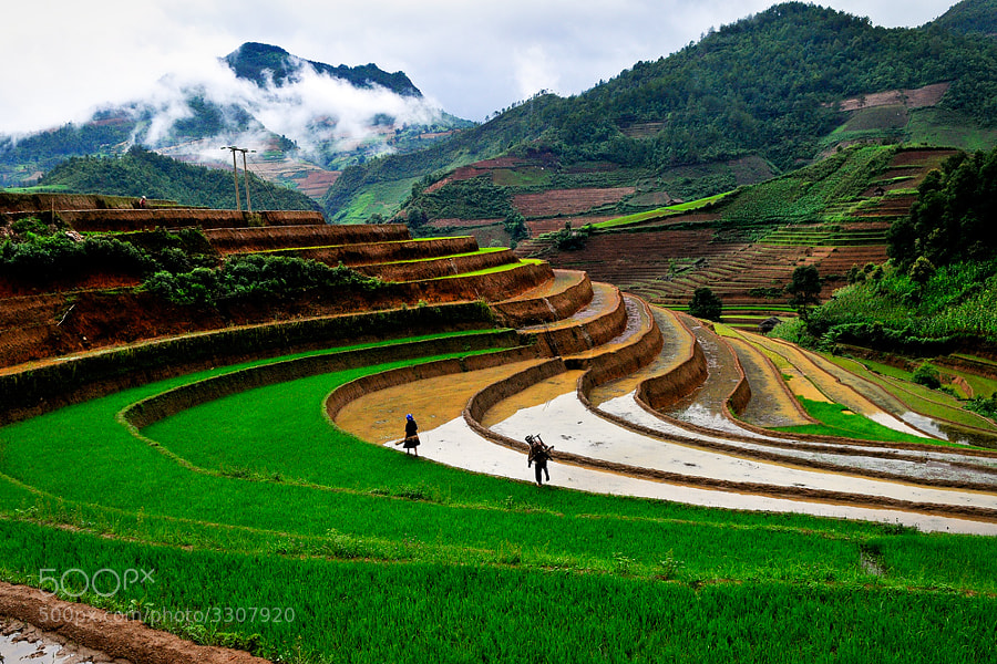 Photograph Work in the morning by Hai Thinh on 500px