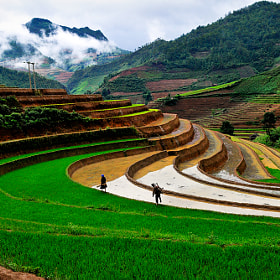 Work in the morning by Hai Thinh (haikeu)) on 500px.com