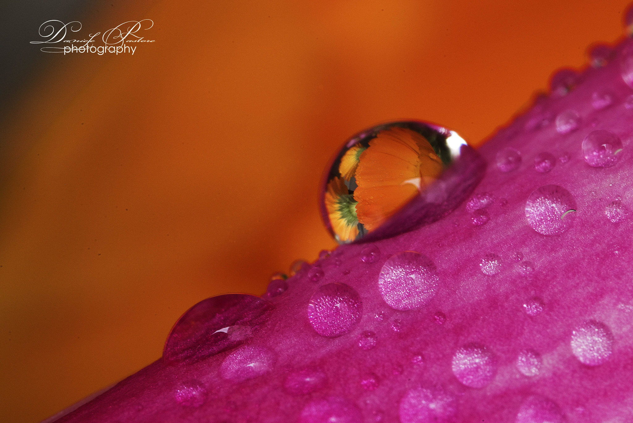 Photograph Looking throught the drop... by Daniele Pastore on 500px
