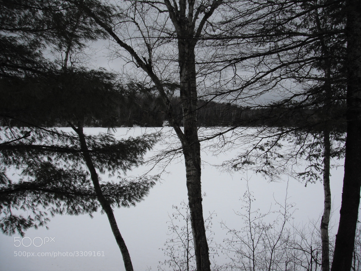 Photograph Winter on the Gatineau River by Alexander Trinh on 500px