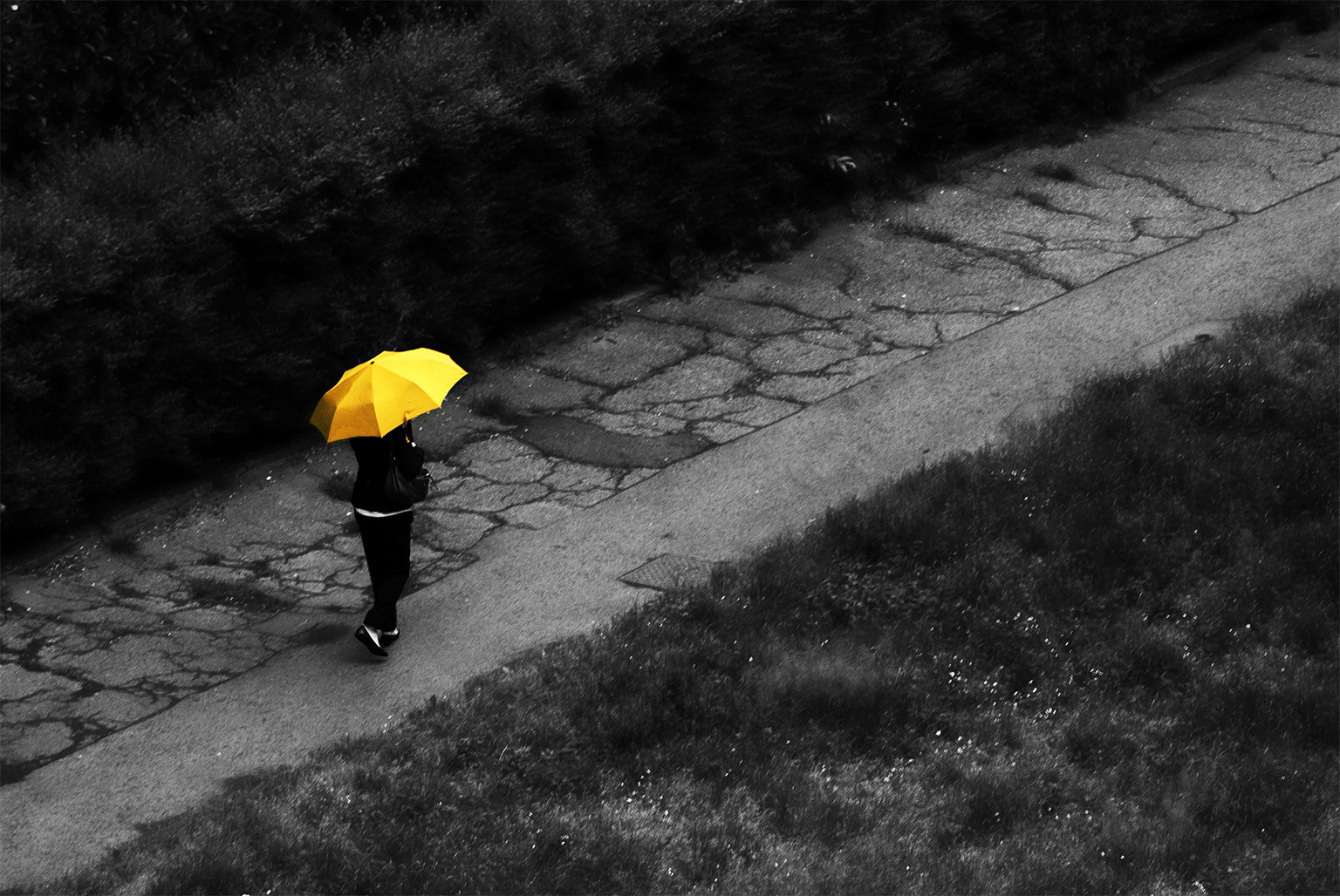 Photograph In yellow. by Simone Furiosi on 500px