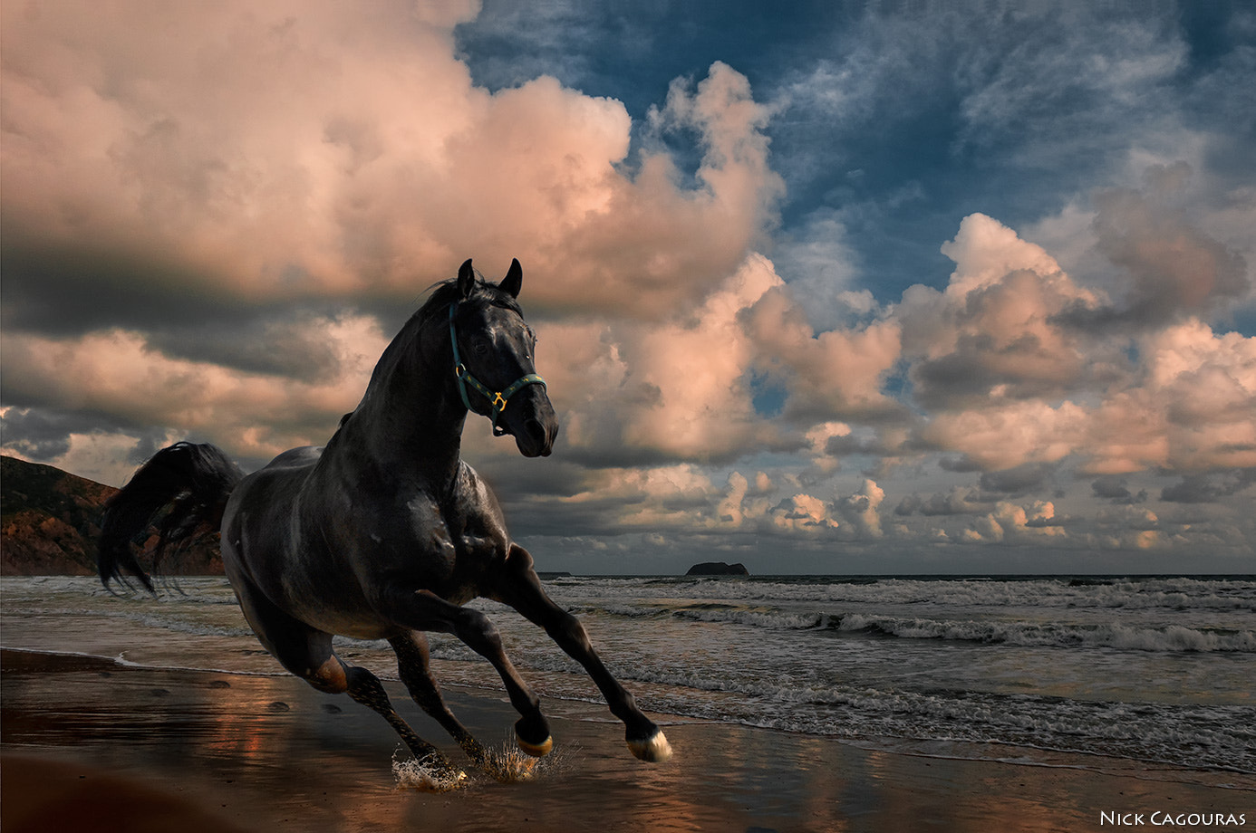 Photograph Freedom by Nick Cagouras on 500px
