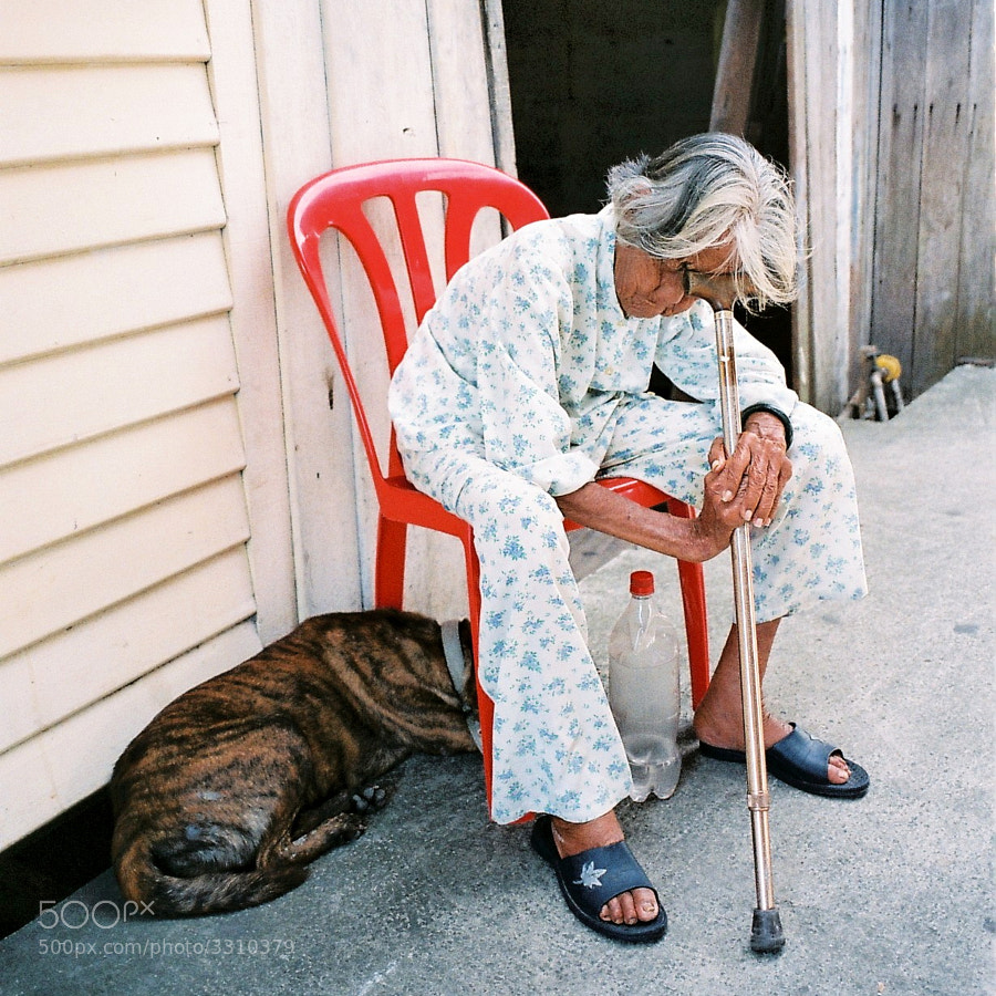 """She called me when I was passing by. """"Please move me to another corner...."""" I obliged without hesitation. I passed by her again on my way back. I took her photo. An old lady & her best friend.... """"Take care and see you!!!"""" I said it...in my heart."""