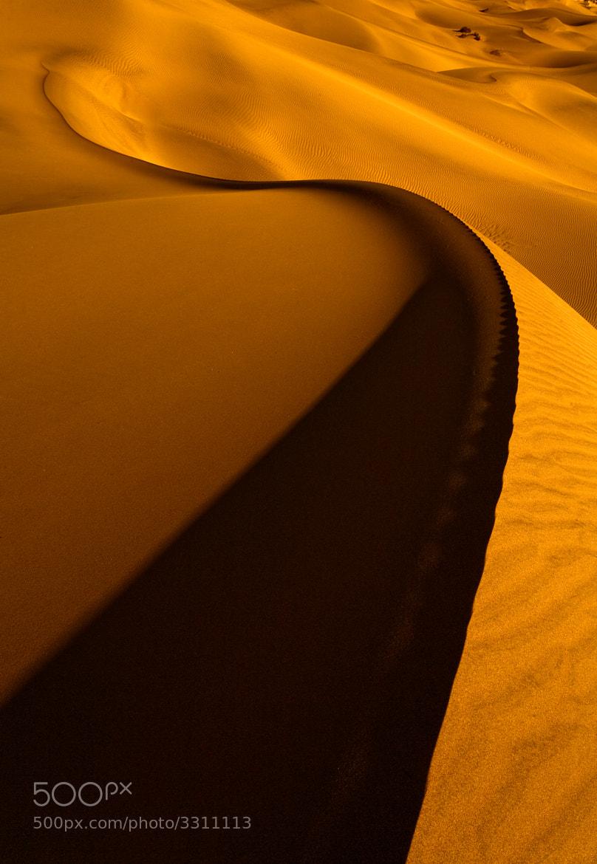 Photograph Yellow silence... by Gleb Tarro on 500px