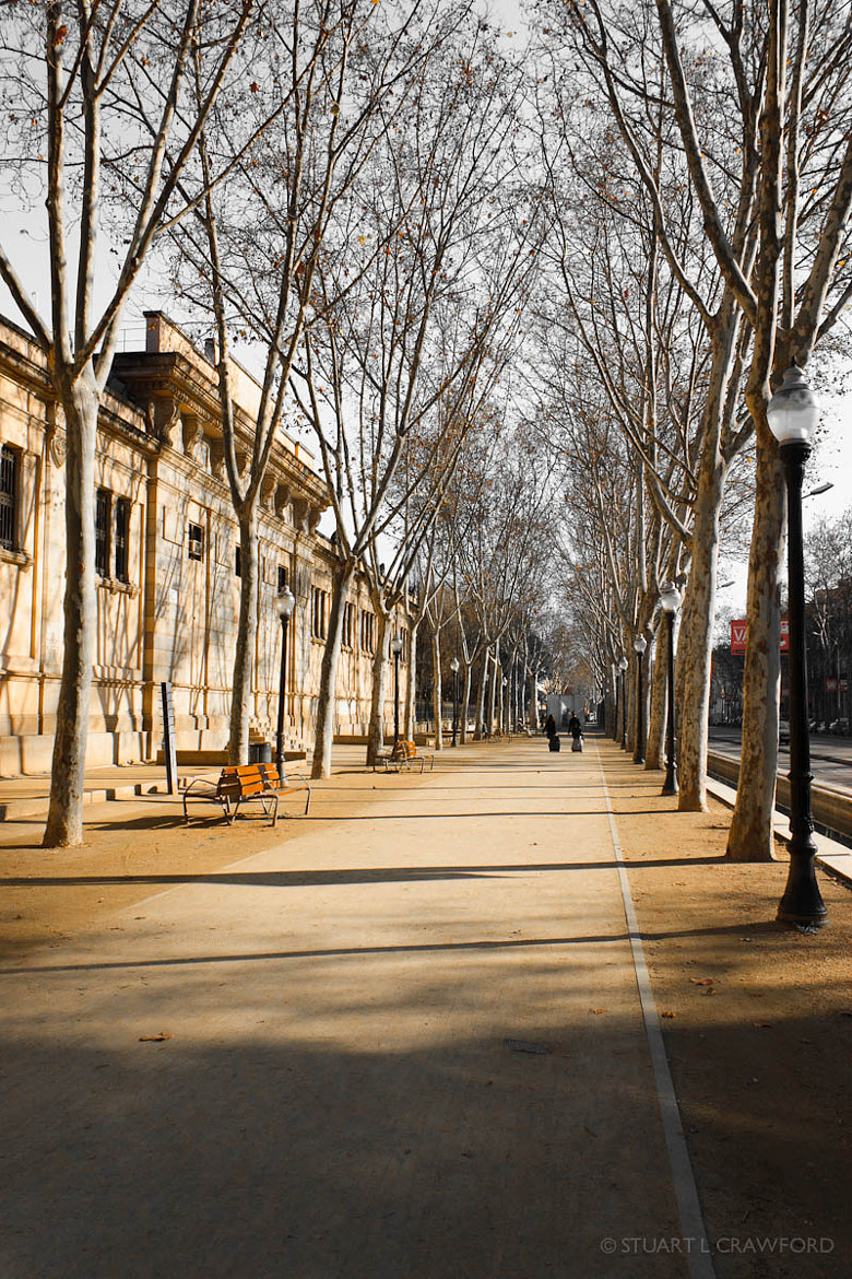 Photograph Passeig de Picasso by Stuart Crawford on 500px