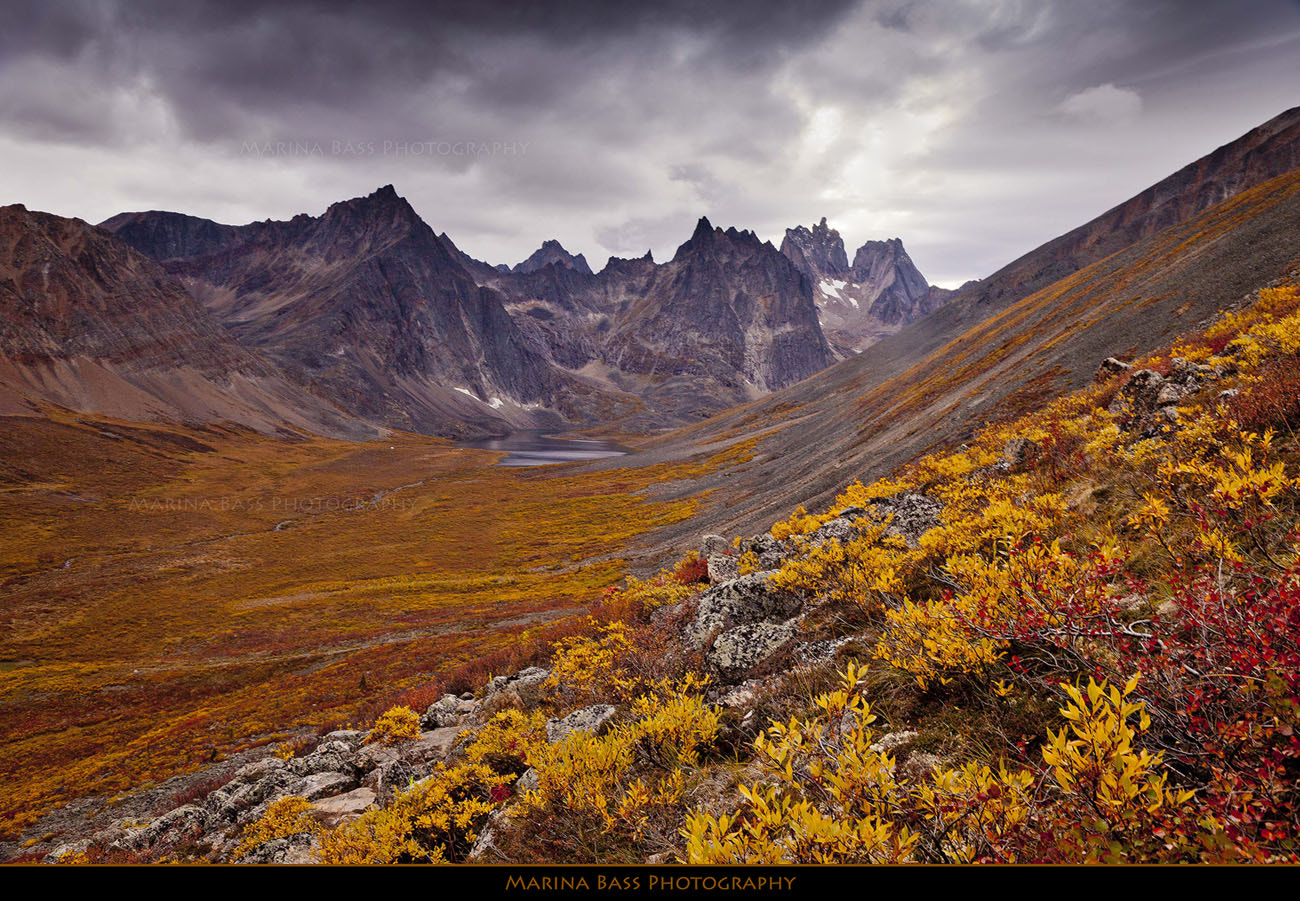Photograph Grizzly Lake, Tombstone Territorial Park, Yukon by Marina Bass on 500px