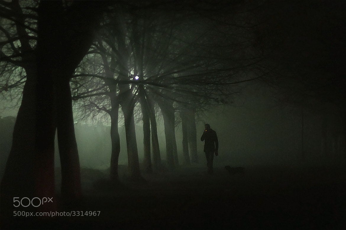 Photograph night walk II by Юрий Татаренко on 500px