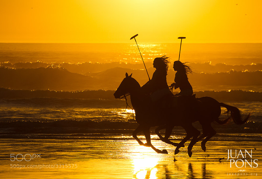 Photograph Polo Riders on the beach, Morro Bay, CA by Juan Pons on 500px
