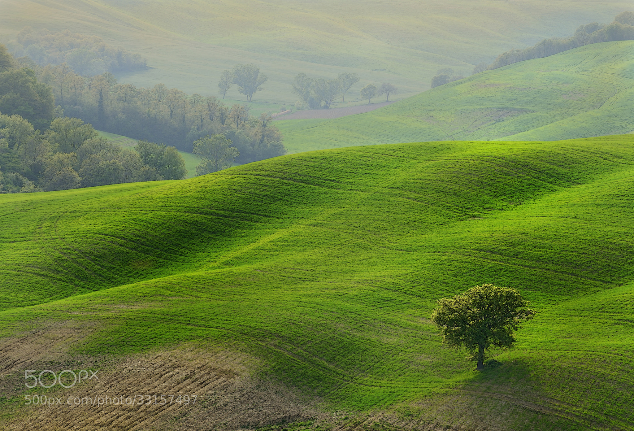 Photograph Tuscan light by mauro maione on 500px